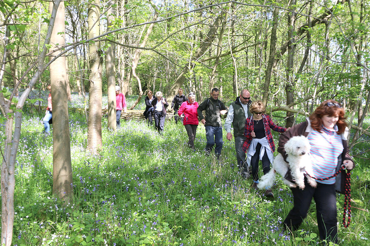 Walking Group - Titchmarsh Village Website